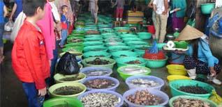 Chợ Côn Đảo – Khu mua sắm nổi tiếng của du lịch Côn Đảo