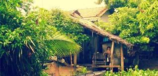 Về Trà Vinh ghé tham quan khu du lịch sinh thái Cồn Hô