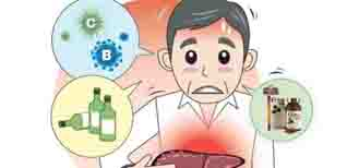Men gan cao - Triệu chứng bệnh men gan cao, có chữa được không ?